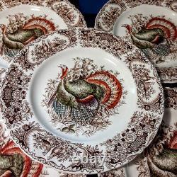 5 Johnson Bros Windsor Ware Wild Turkeys 10 3/4 Dinner Plates Native American