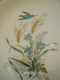 Johnson Brothers Vintage blue bird 1950s Dinner tea Set tureen 6 place settings