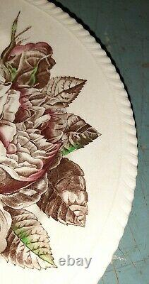 Lot 9 Antique Rose Old Flower Prints Dinner Plates 10.5 by Johnson Brothers