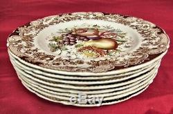 Set of (8) Johnson Brothers Windsor Ware HARVEST FRUIT Dinner Plates! MINT