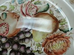 Set of 9 Johnson Brothers Windsor Ware Harvest Fruit Dinner Plates