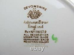 Superb vintage Johnson Brothers Devonshire Dinner & Tea Service Set for 6